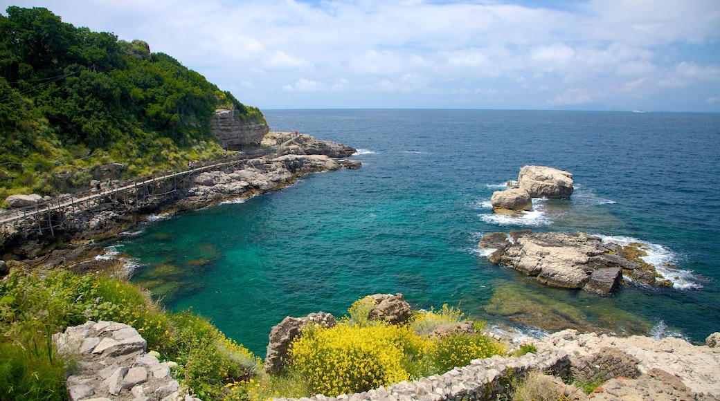 Baths Of Queen Giovanna showing tropical scenes and rugged coastline