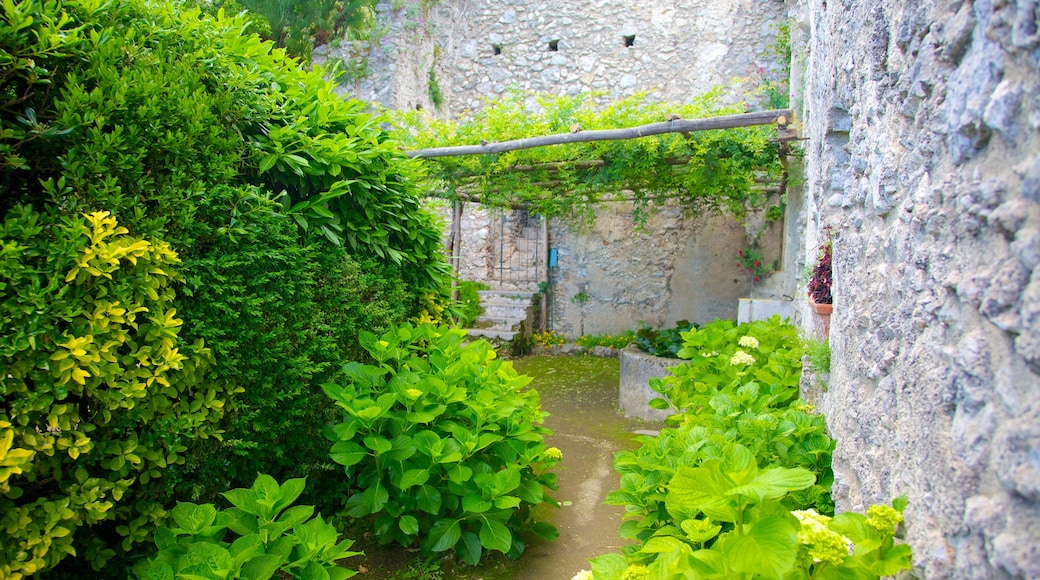 Ravello which includes a garden