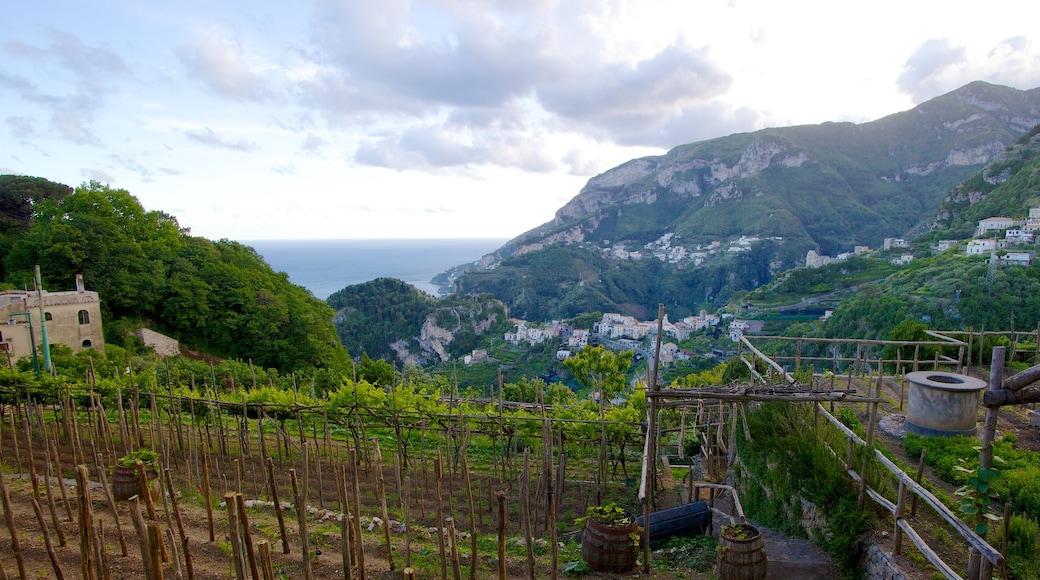 Ravello mostrando montagna, terreno coltivato e vista del paesaggio