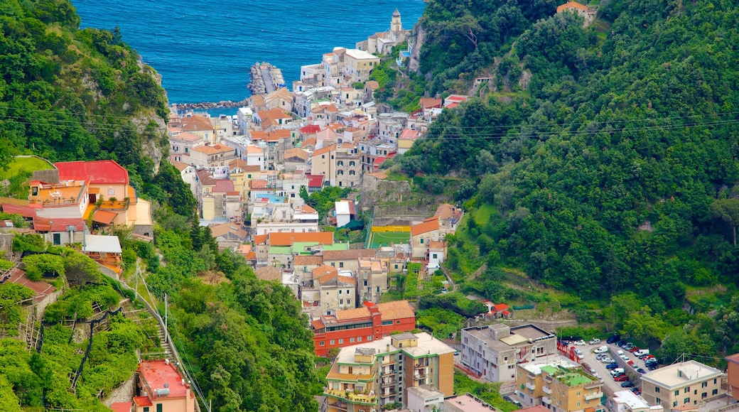 Pontone which includes a city, general coastal views and a coastal town