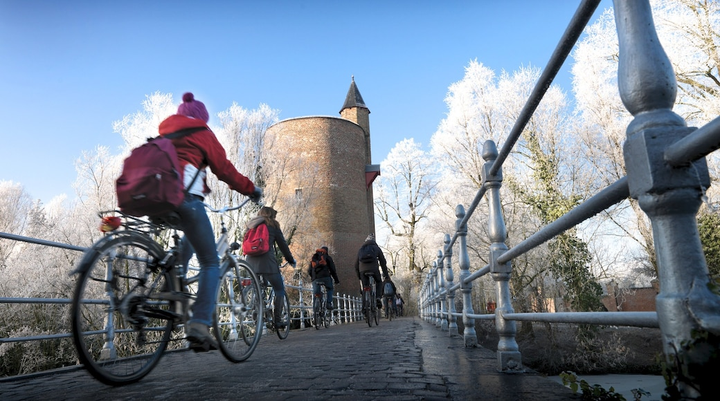 Minnewater bevat een brug, fietsen en een stad