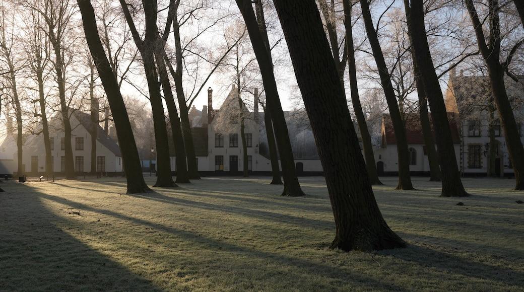 Begijnhof montrant petite ville ou village et jardin