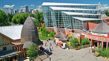 Calgary Zoo which includes modern architecture, zoo animals and a city