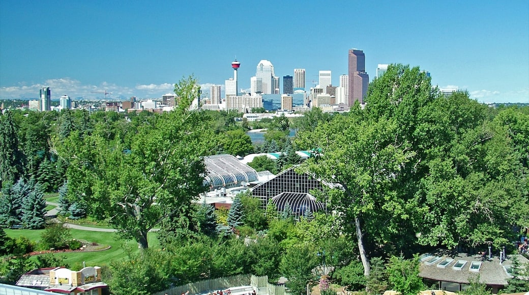 Calgary Zoo which includes a city