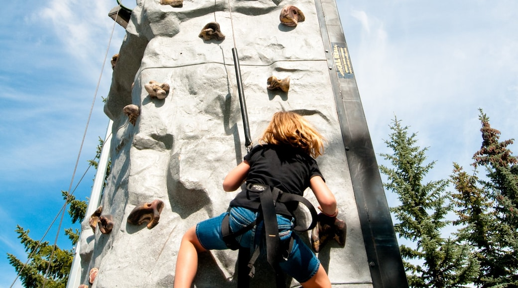 Canada Olympic Park featuring climbing and a sporting event as well as an individual child