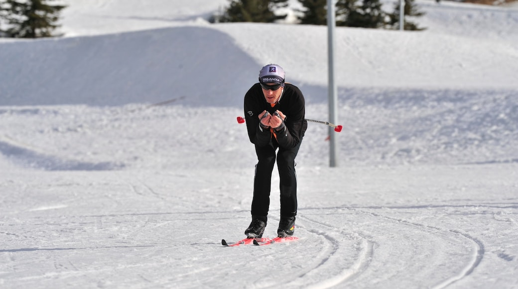 Canada Olympic Park featuring snow skiing, snow and a sporting event