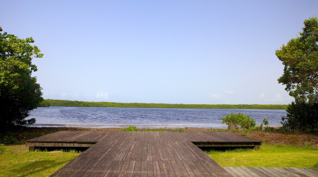 Puerto Rico featuring a lake or waterhole and general coastal views