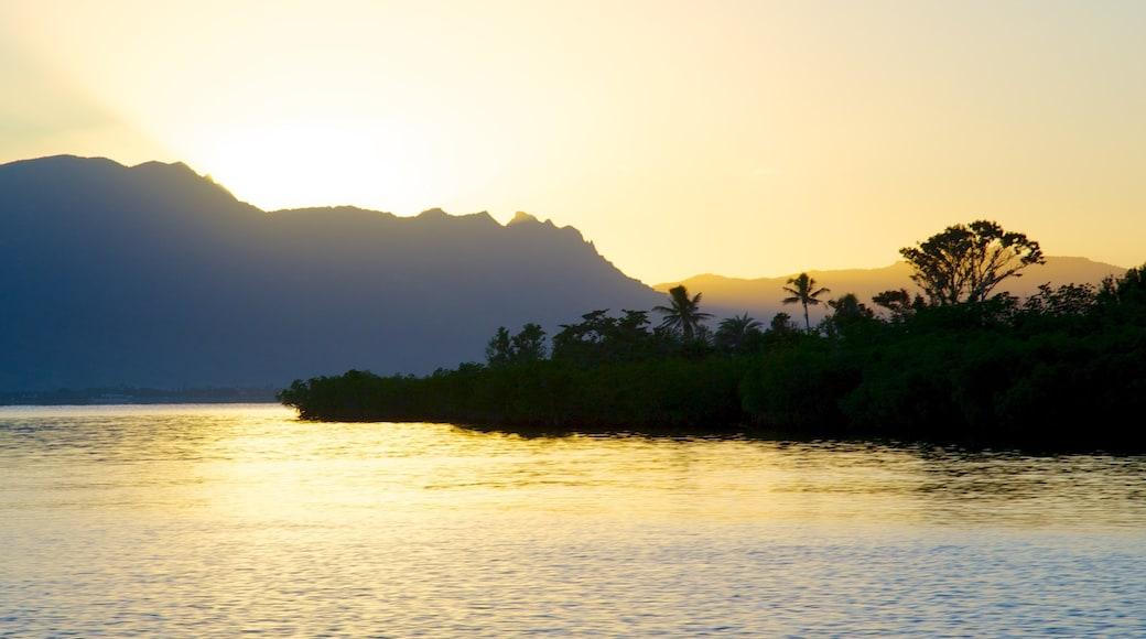 Port Denarau which includes general coastal views and a sunset