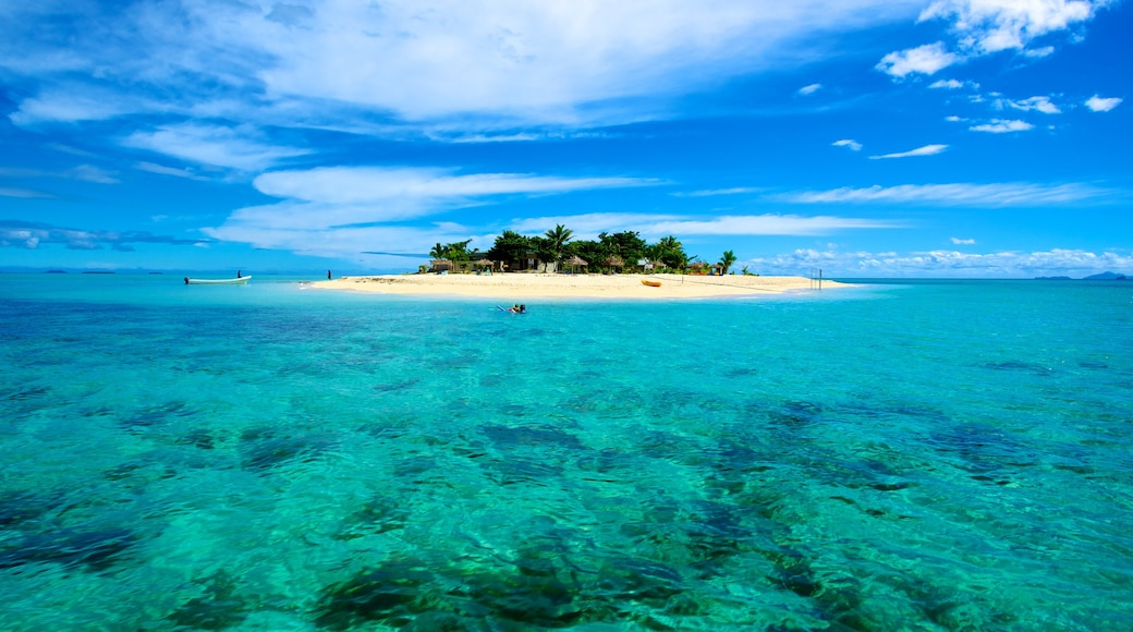 Fiji which includes tropical scenes and island images