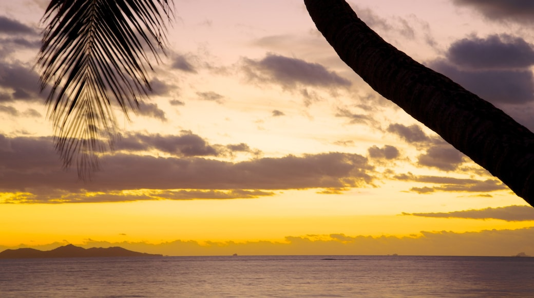 Nadi showing general coastal views, tropical scenes and a sunset