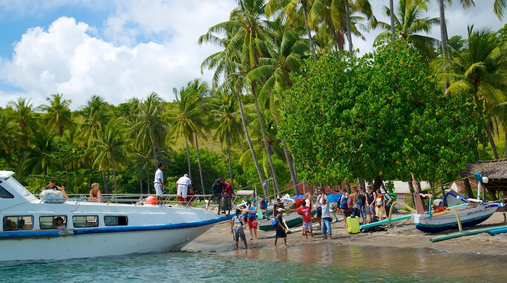 Gili Islands featuring boating, tropical scenes and a beach