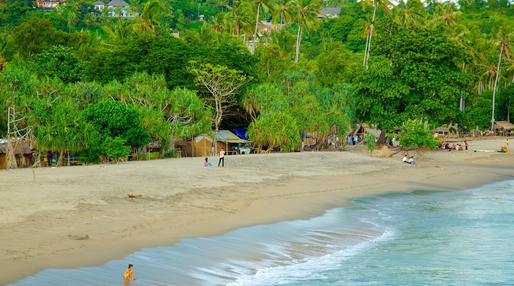 Lombok which includes a sandy beach