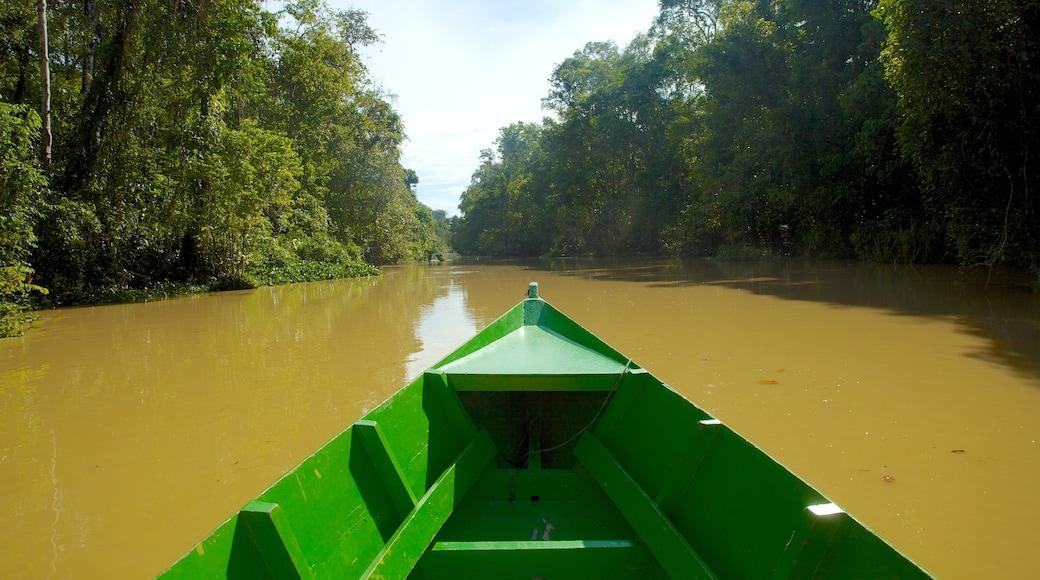 山打根 其中包括 河流或小溪, 划船 和 森林風景
