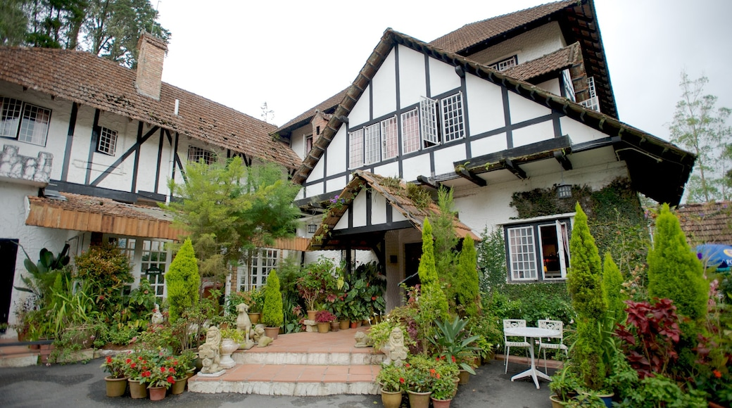 Cameron Highlands which includes a house