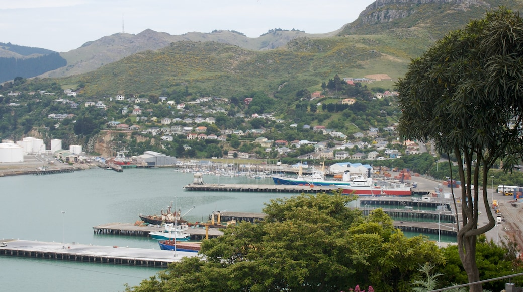 Lyttelton Harbour showing a marina, mountains and a bay or harbour