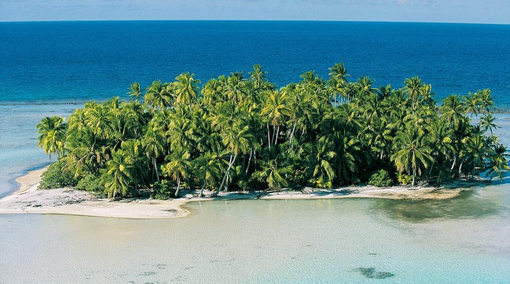 Atoll de Rangiroa mettant en vedette plage de sable, panoramas et scènes tropicales
