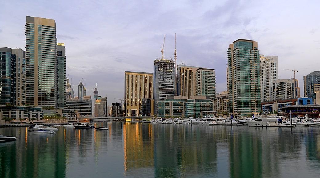 Marina de Dubaï qui includes marina, silhouettes urbaines et ville
