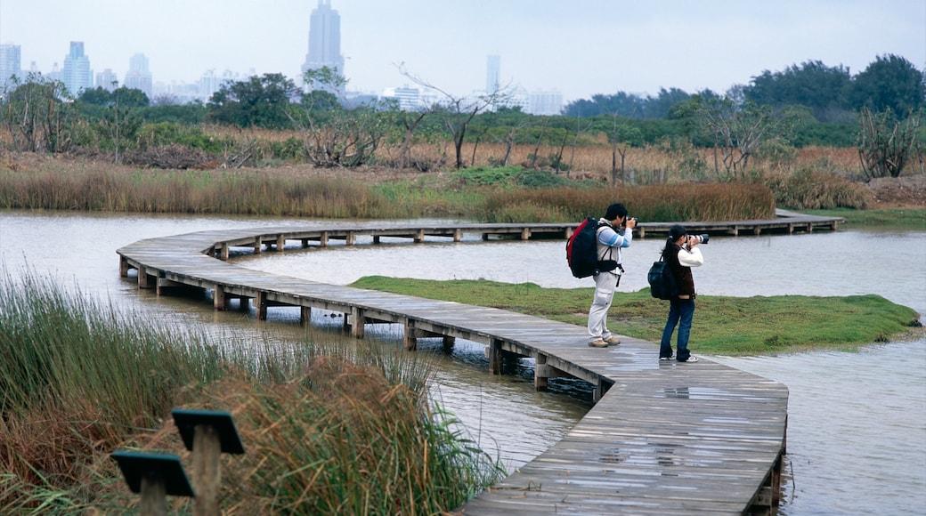 Hong Kong Wetland Park featuring a park, general coastal views and wetlands