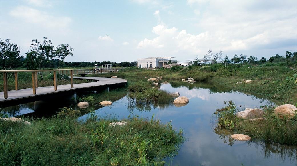 Hong Kong Wetland Park featuring wetlands and a garden