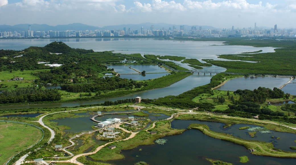 Hong Kong Wetland Park which includes a park and wetlands