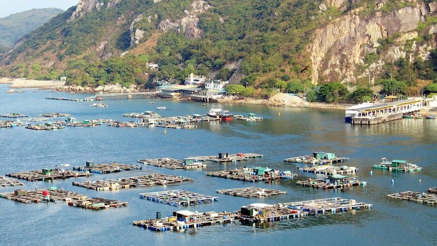 Lamma Island showing a coastal town