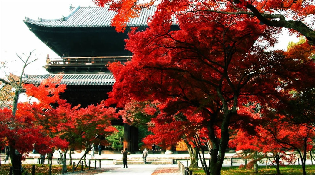 南禪寺 设有 公園 和 秋色