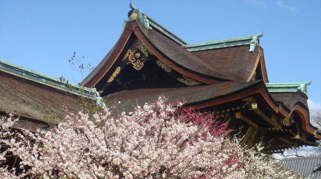 京都 其中包括 廟宇或禮拜堂 和 歷史建築