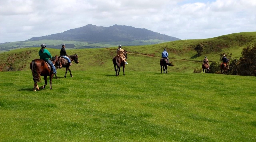 Raglan featuring mountains, land animals and horse riding