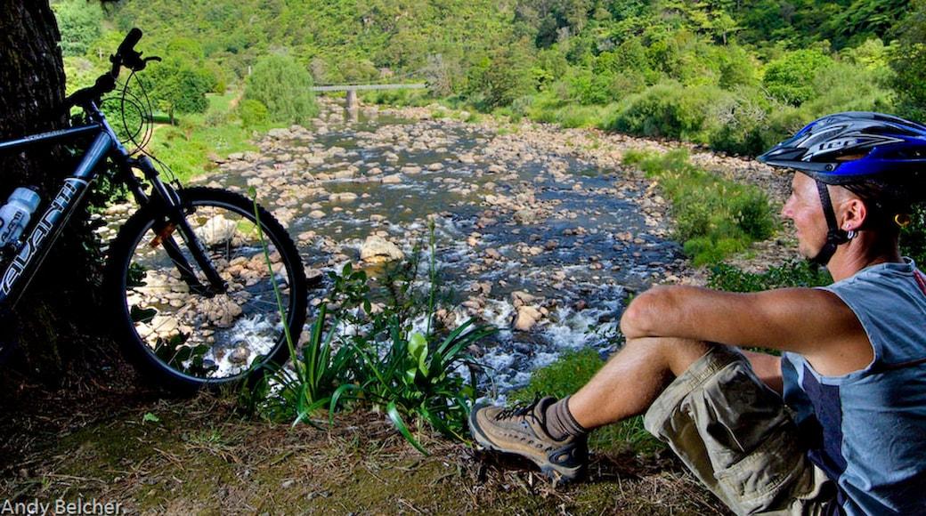 Karangahake Gorge featuring a river or creek and mountain biking as well as an individual male