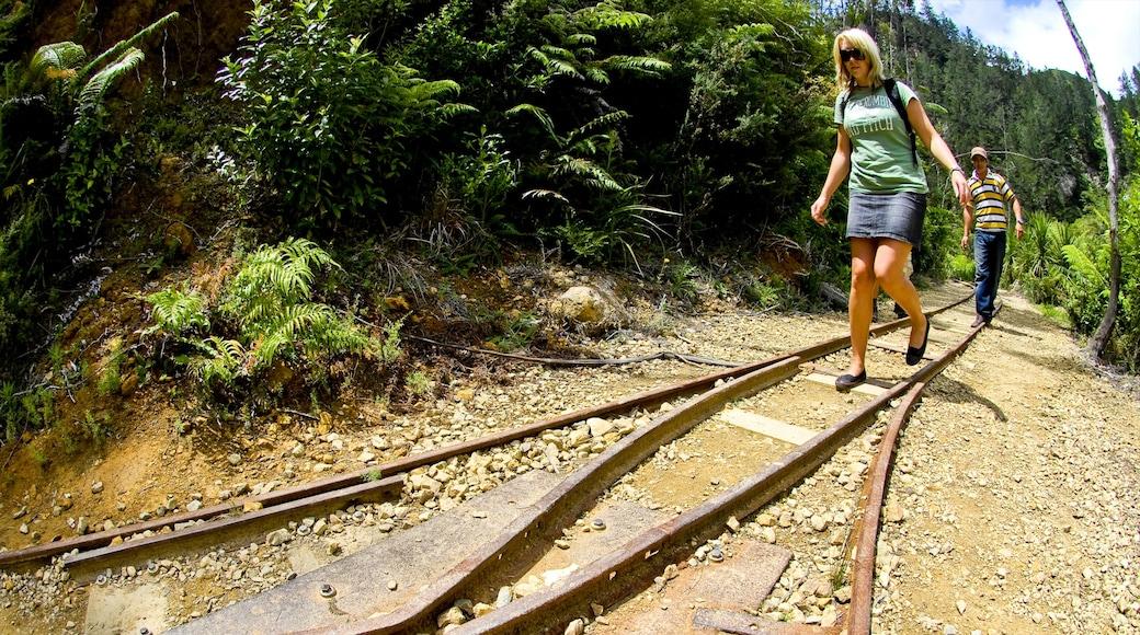 Karangahake Gorge featuring hiking or walking and railway items as well as a couple