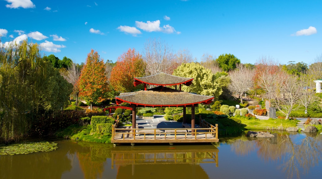 Hunter Valley Gardens showing autumn leaves, a pond and a garden