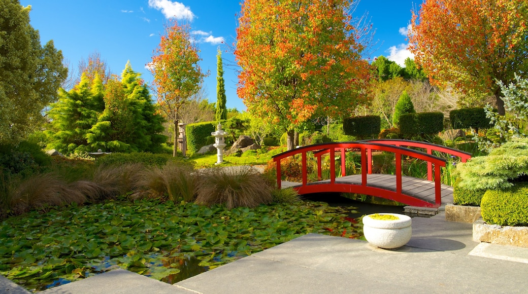 Hunter Valley Gardens which includes a pond, a bridge and a garden