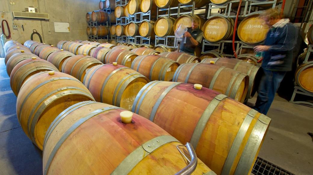 Saddlers Creek Wines featuring interior views
