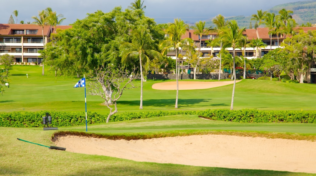 Kaanapali showing tropical scenes and golf