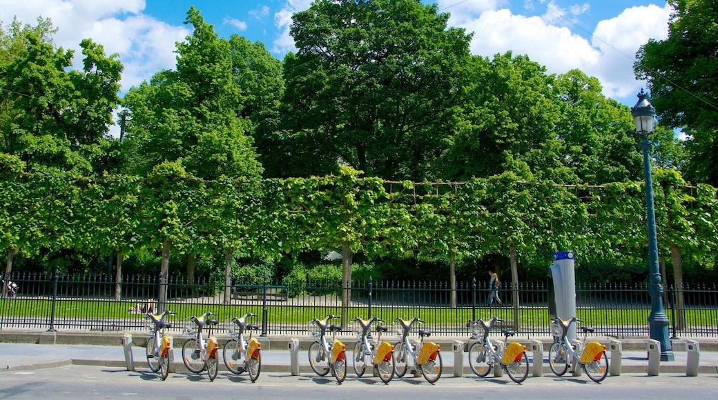 Warandepark toont een park en fietsen