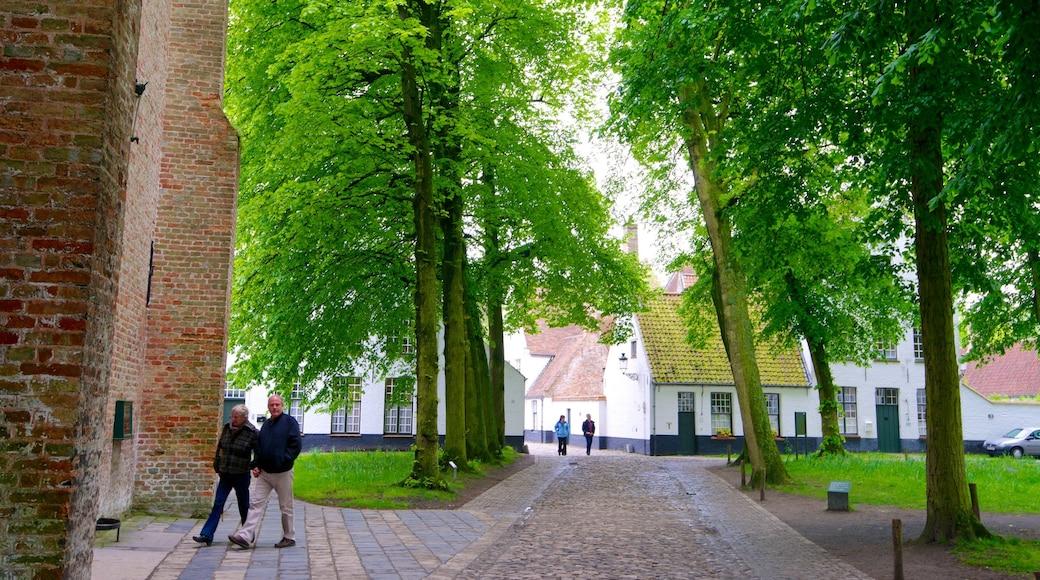Begijnhof mettant en vedette scènes de rue et jardin