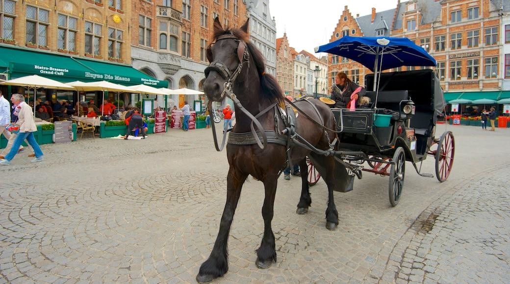 Grote Markt inclusief een stad, paardrijden en markten