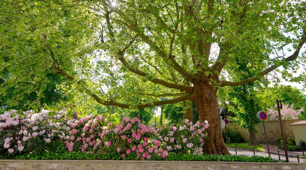 Roissy-en-France showing a park and flowers
