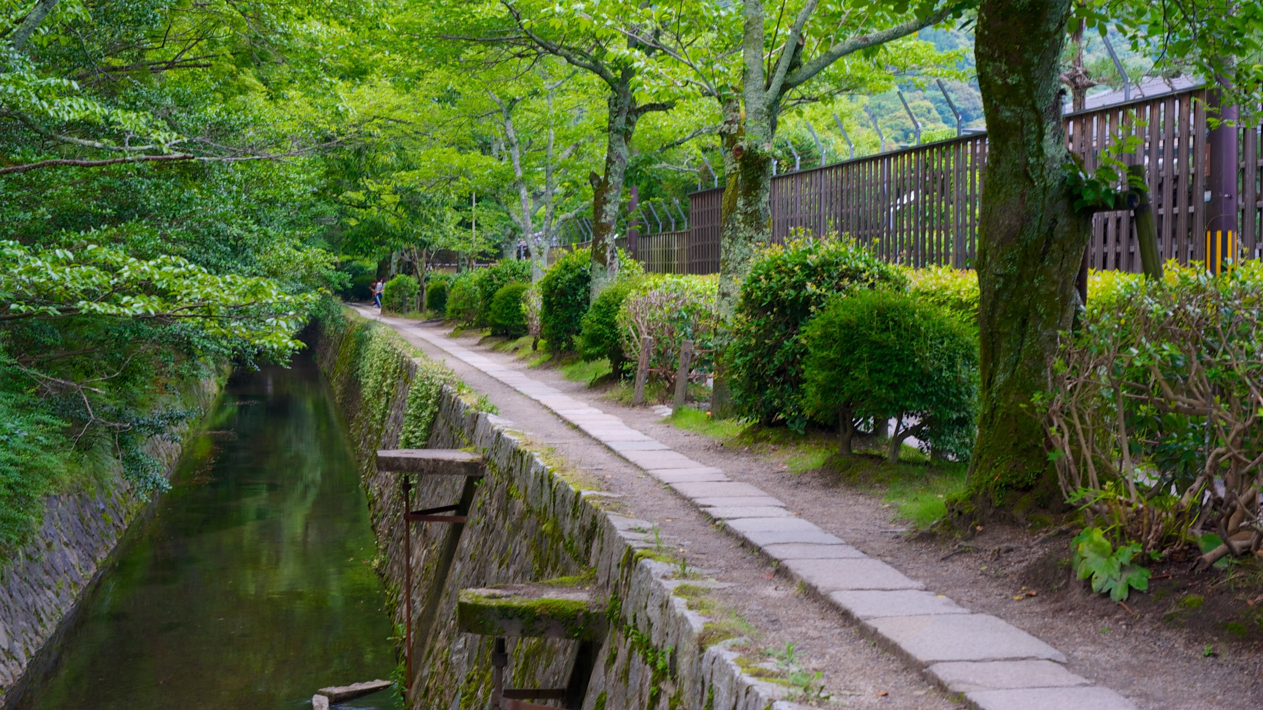 Stadtbezirk Sakyo, Kyoto, Kyoto (Präfektur), Japan