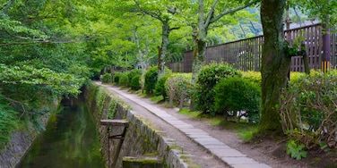 Philosopher\\\'s Walk featuring a river or creek and a garden