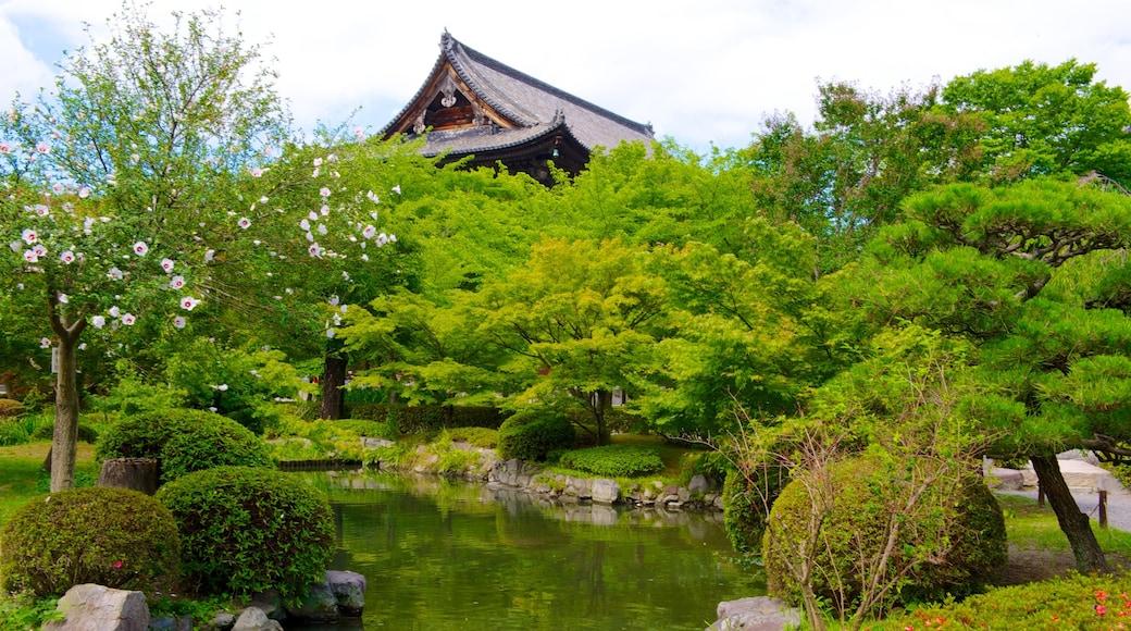วัด Toji ซึ่งรวมถึง บ่อน้ำ, วัดหรือสถานที่เคารพบูชา และ ดอกไม้