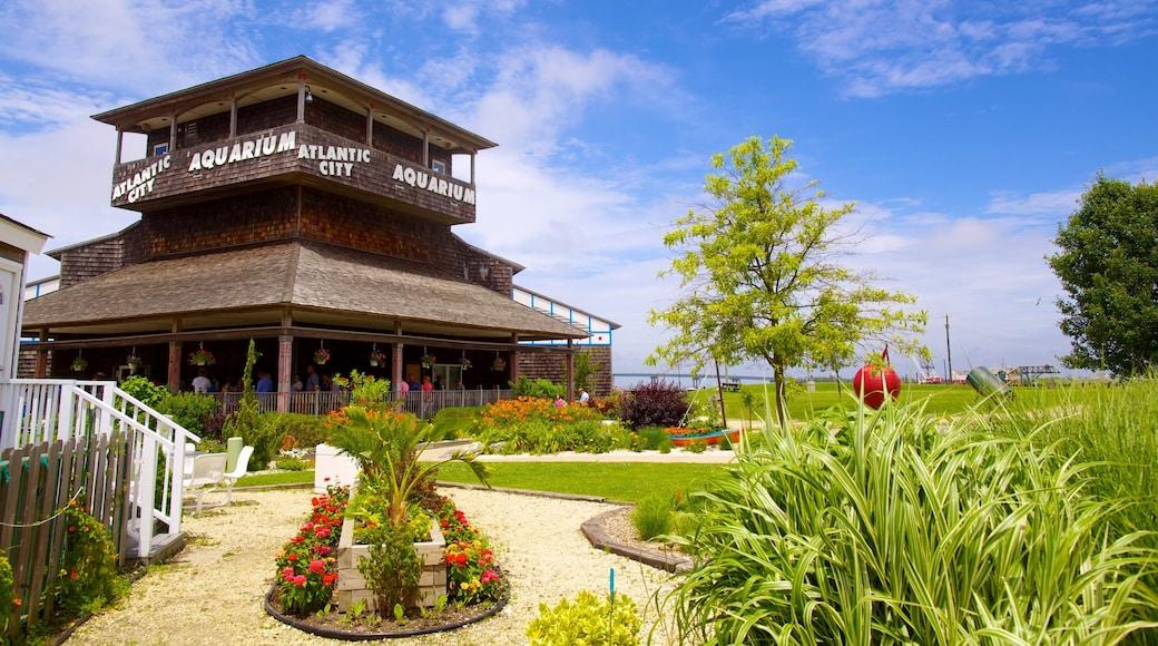 Atlantic City-akvariet som inkluderar en trädgård, blommor och havsdjur