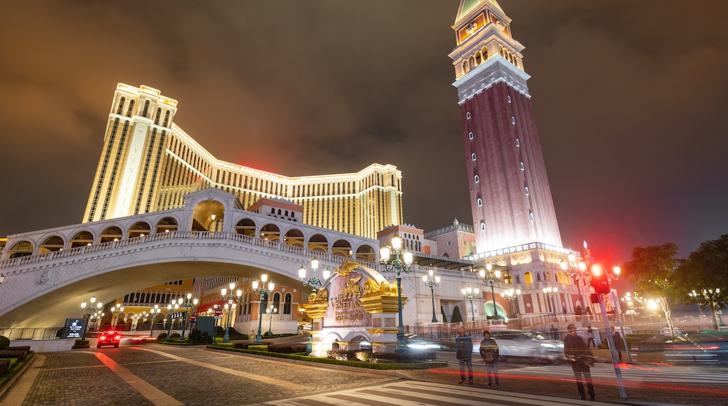 Venetian Macao Casino showing night scenes and a city