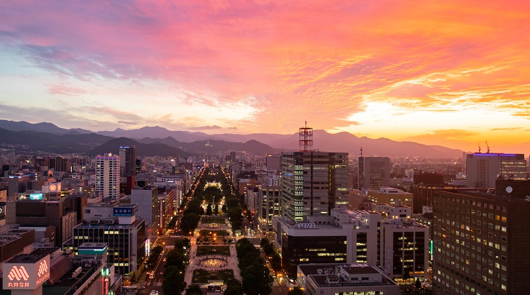 Sapporo showing a city, landscape views and a sunset