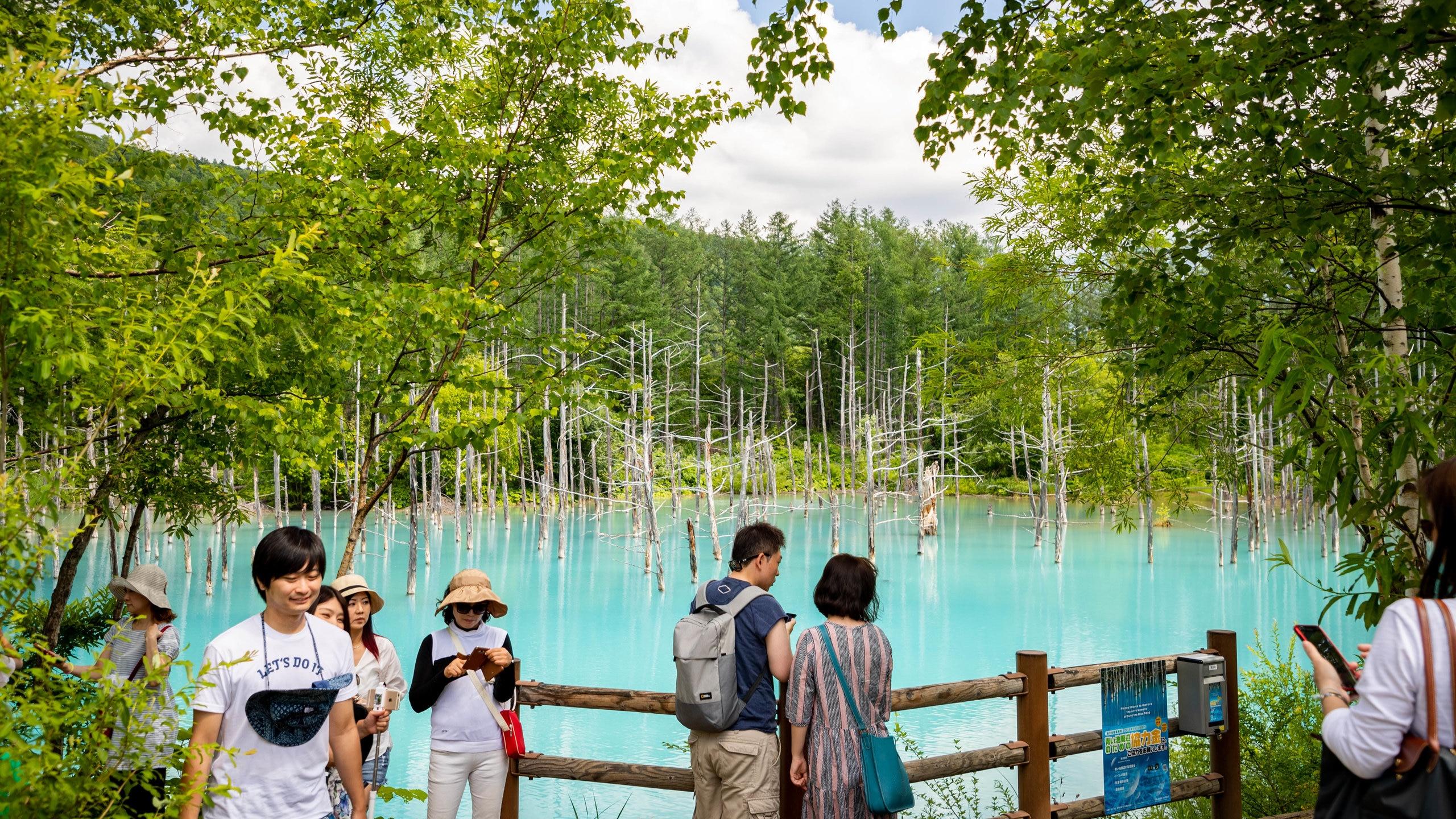 Blue Pond, Biei, Hokkaido Prefecture, Japan