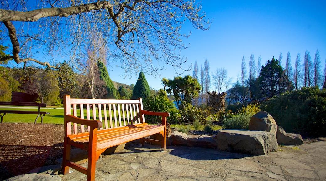 Royal Tasmanian Botanical Gardens showing a garden