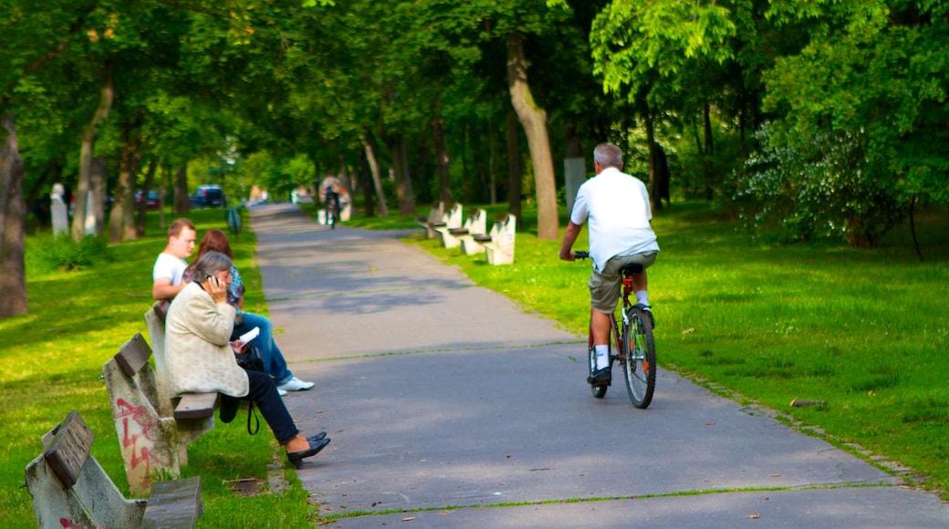 Stadtwäldchen mit einem Fahrradfahren und Garten