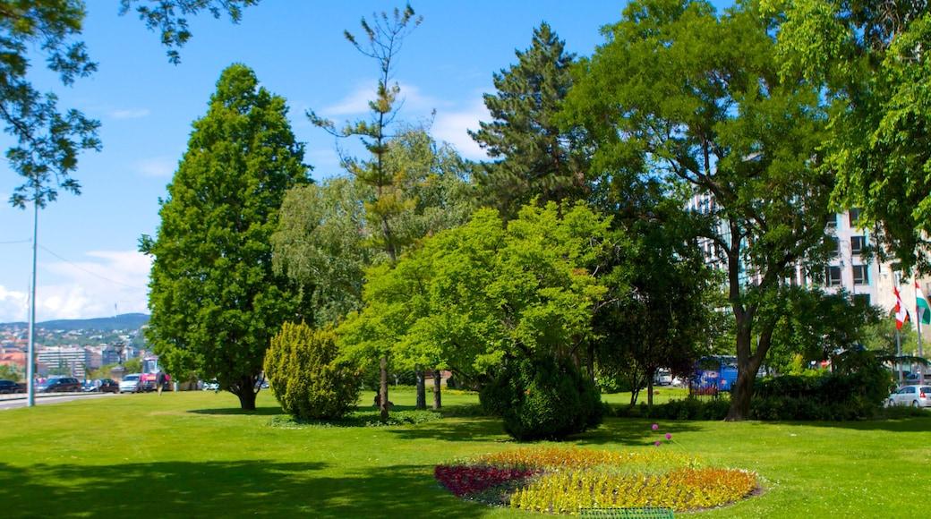 Roosevelt Platz welches beinhaltet Park und Blumen