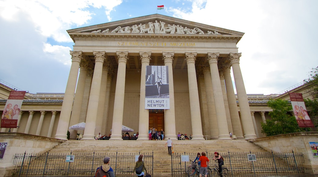 Museum of Fine Arts showing a city and art