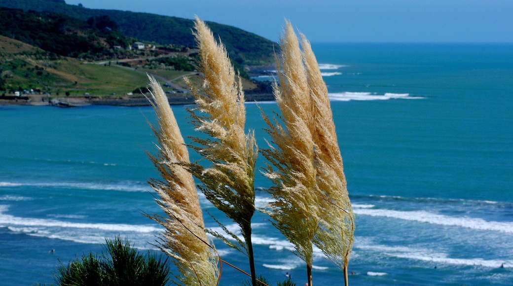 Hamilton featuring general coastal views